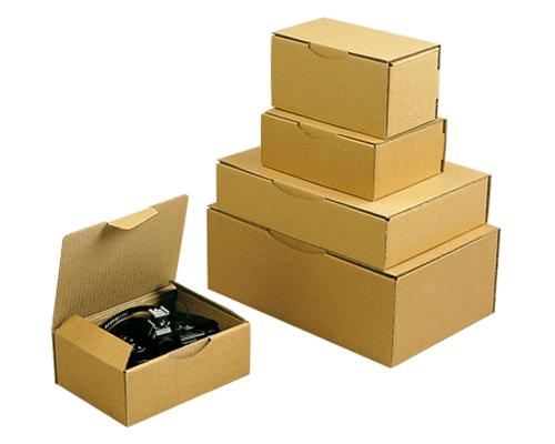 Lot de 50 boîtes postales L150xl100xH70 mm