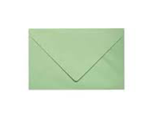 1000 enveloppes pour bulletin de vote vert 90 x 140mm 70g