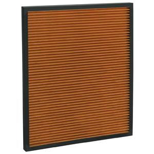 Filterkassette - Antibakterieller PM2.5 Filter AP 100