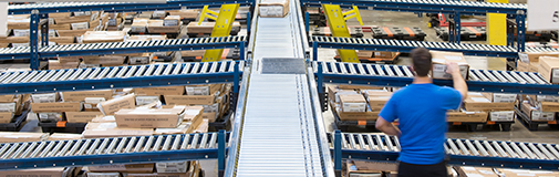 automated sorting machine
